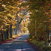 Autumn Country Road - Oil Poster