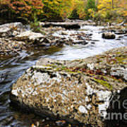 Autumn Cranberry River Poster