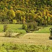 Autumn Farm Vista Poster