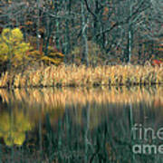 Autumn Fisherman Reflections Poster