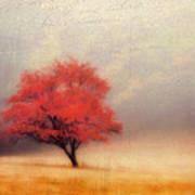 Autumn Fog Poster by Darren Fisher