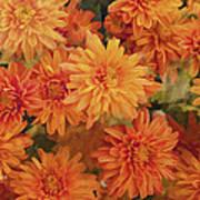 Autumn Garden Impressions Poster