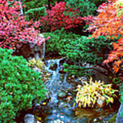 Autumn Garden Waterfall I Poster