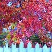 Autumn Glory Poster