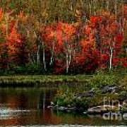 Autumn In Canada 2 Poster by Marjorie Imbeau