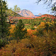 Autumn In Red Rock Canyon Poster