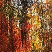 Autumn In The Woods Poster by David Lane
