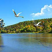 Autumn Landing Poster