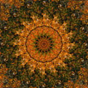 Autumn Mandala 1 Poster