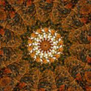 Autumn Mandala 4 Poster