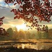 Autumn Morning At Harvard Pond Poster