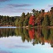 Autumn Nature Lake And Trees Poster