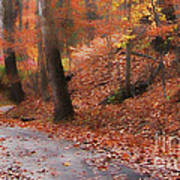 Autumn On A Quiet Country Lane Poster
