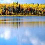 Autumn On Chena Lake L Poster