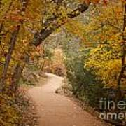 Autumn On Emerald Trail Poster