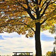 Autumn Park Poster by Elena Elisseeva
