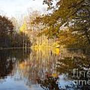 Autumn Pond In Harbor Country Poster