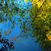 Autumn Reflections New Hampshire II Poster