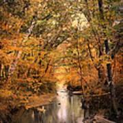 Autumn Riches 2 Poster by Jai Johnson