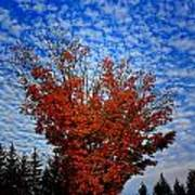 Autumn Sky Drama Poster