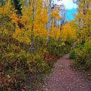 Autumn Trails Poster