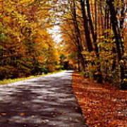 Autumn Walk Poster