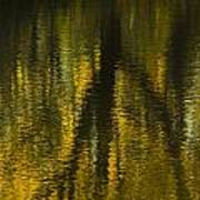 Autumn Water Reflection Abstract I Poster