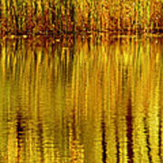 Autumn Water Reflection Abstract II Poster