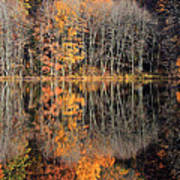 Autumns Art Poster