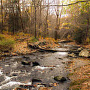 Babbling Brook In Autumn Poster