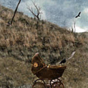 Baby Buggy In Wilderness Poster