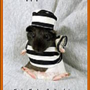 Baby Guinea Pig Trick Or Treat Poster