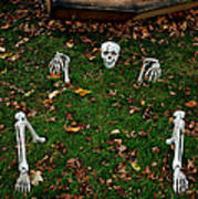Back Yard Bone Yard Poster by LeeAnn McLaneGoetz McLaneGoetzStudioLLCcom