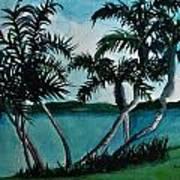 Backyard Palms Poster