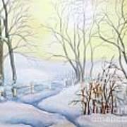 Backyard Winter Scene Poster