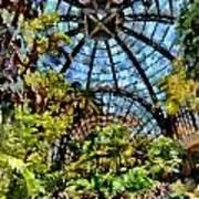 Balboa Park Botanical Gardens Poster
