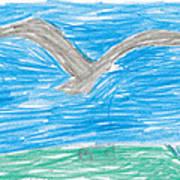 Bald Eagle Flying Poster