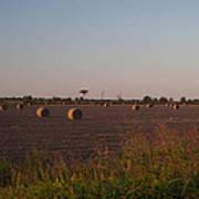 Bales In Peanut Field 1 Poster