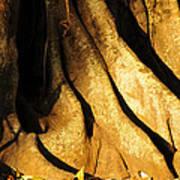 Banyonland Poster