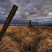 Barbed Wire Fence Posts With Dark Sky Poster