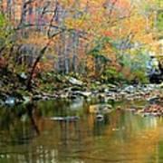 Barkshed Creek Toned Poster