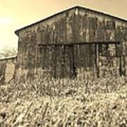 Barn In Brown Poster