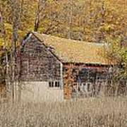 Barn With Autumn Leaves Poster