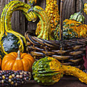 Basket Full Of Gourds Poster