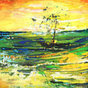 Bathed In Golden Light Poster