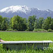 Bathtub On A Green Field Poster
