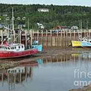 Bay Of Fundy - Low Tide Poster