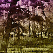 Bayou Twilight Poster