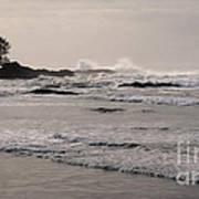 Beach At Tofino  Poster