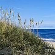 Beach Dunes. Poster by John Greim